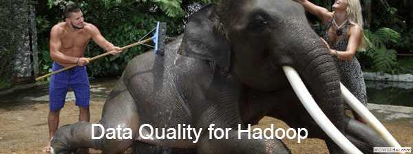 Big Data Quality for Hadoop