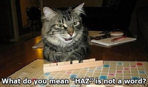 scrabble-cat-haz-is-not-a-word