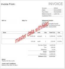 invoice without master data