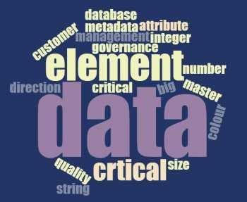 critical data elements